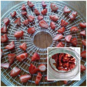 fraises 10h30