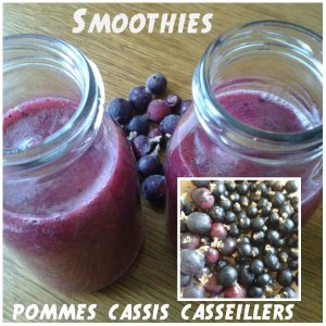 smoothies cassis casseillers pommes