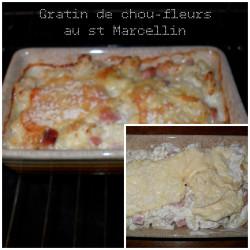 gratin-chou-fleurs