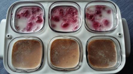 yaourt-carambar-framboises